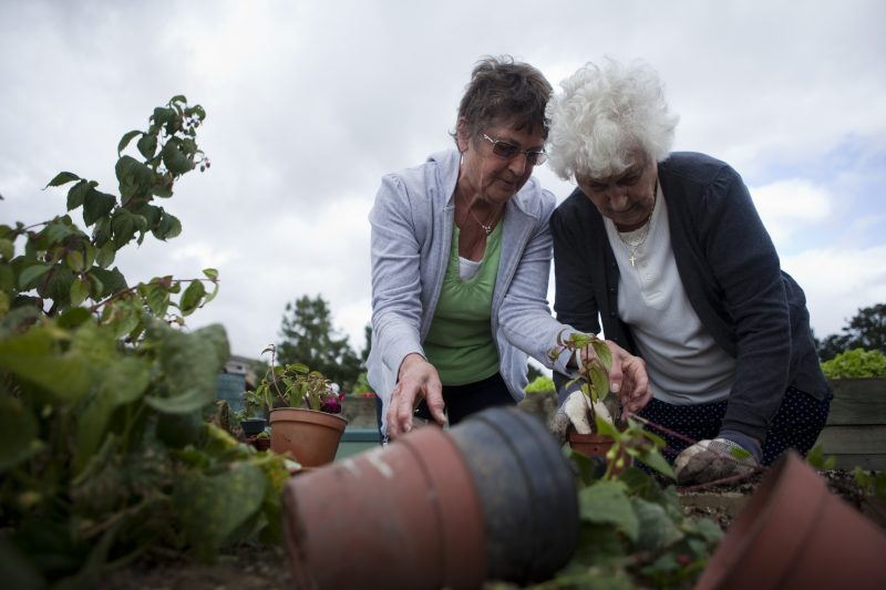 Two women making good on their gardening resolutions