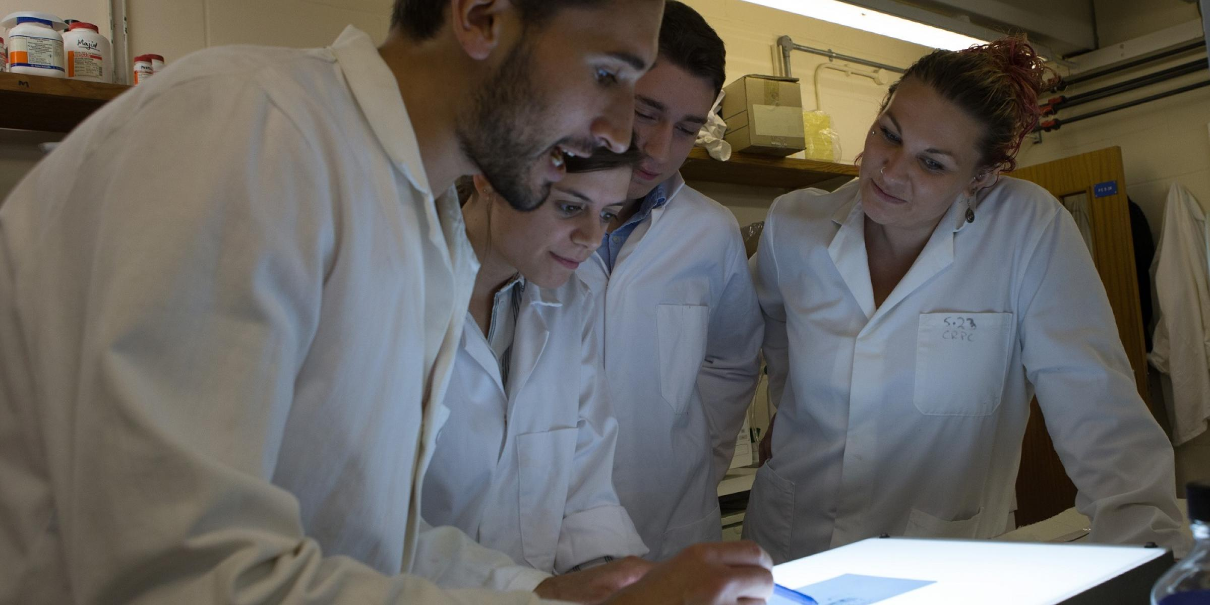 A group of researchers in the lab