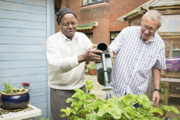 Two men watering plants together