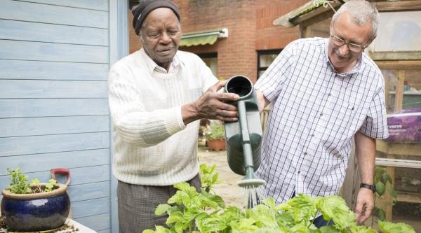 Two men watering plants