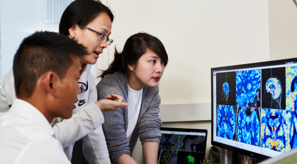 Early career researchers looking at a desktop screen of brain scans